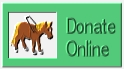 Click here to make a donation to the Guide Horse Foundation online!